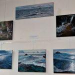 Martine Carraud artiste peintre - expose ses toiles à la galerie Artmonie - Genève 2017