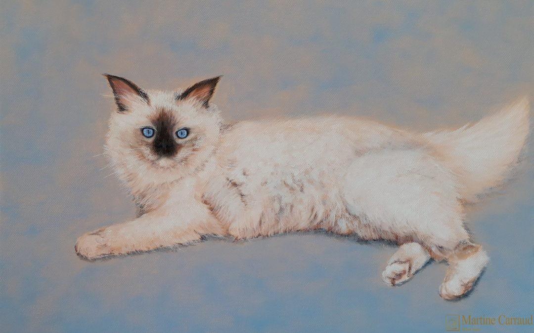 Comment peindre un chat ?
